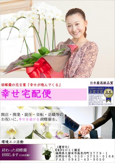 胡蝶蘭カタログ表紙①